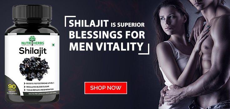 Shilajit Is The Best Supplement For Men